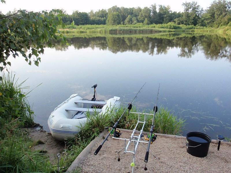 pikefinder.pl/images/photoalbum/album_18/sum_siluro_sumy_catfish_silure_50215f5796430_forumsumowe.jpg