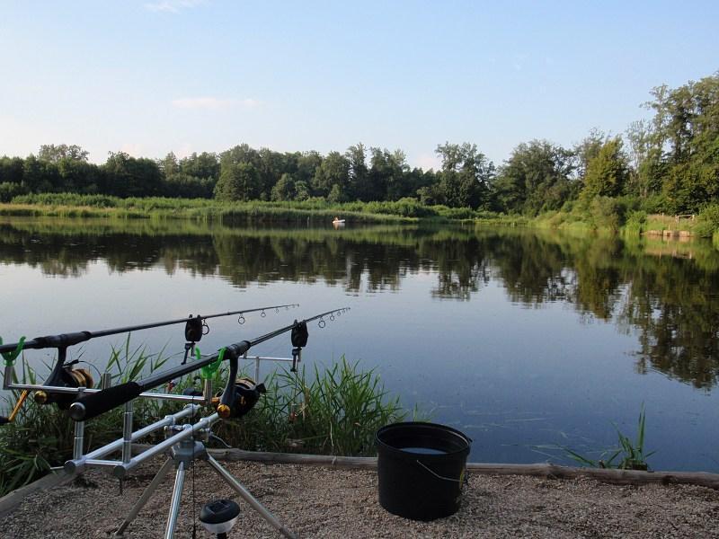 pikefinder.pl/images/photoalbum/album_18/sum_siluro_sumy_catfish_silure_50215f8cf3ae2_forumsumowe.jpg