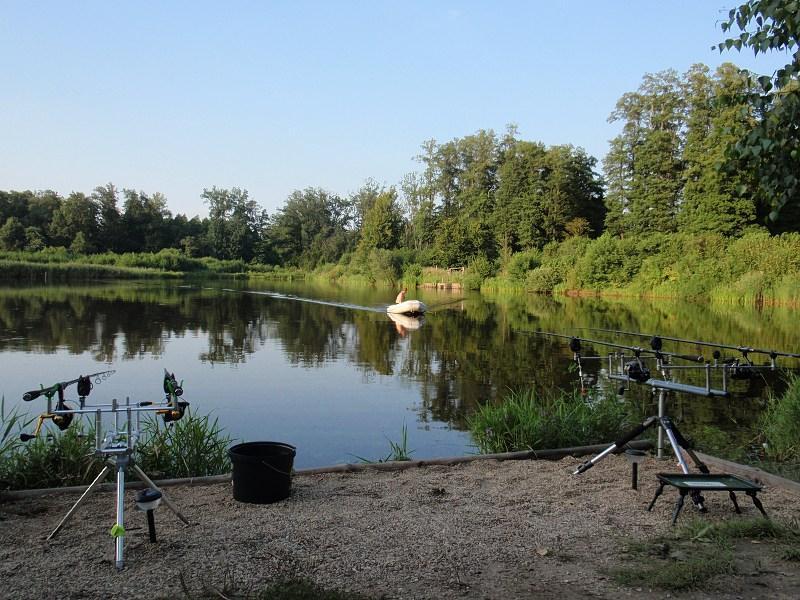pikefinder.pl/images/photoalbum/album_18/sum_siluro_sumy_catfish_silure_50215fb559a84_forumsumowe.jpg