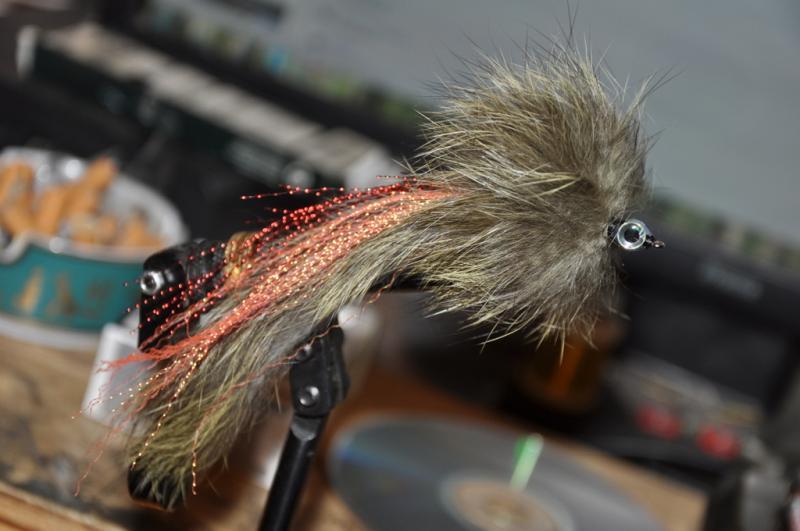 pikefinder.pl/images/photoalbum/album_18/sum_siluro_sumy_catfish_silure_51703ca249c1f_forumsumowe.jpg