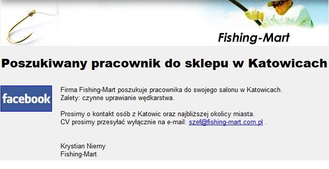 pikefinder.pl/upload_img/30967_praca_katowice.jpg